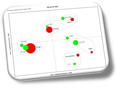 Perceptual map - Online survey reports