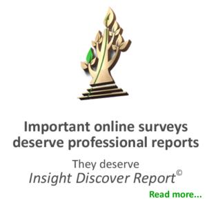MarketingStat - Professional online survey report